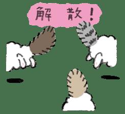 My Ragdoll Cat sticker #12369701