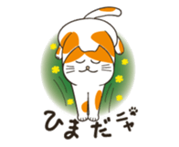 Two paws up! Chaemon the Cat sticker #12384470