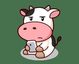 Momo Cow : Animate Sticker sticker #12398819