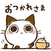 สติ๊กเกอร์ไลน์ The cat's name is Choco. 05