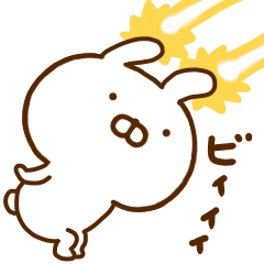Rabbit Usahina friend