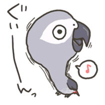 Cockatiel and Grey Parrot 2 sticker #12467723