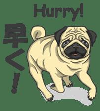 Fawn Pug2 sticker #12485105