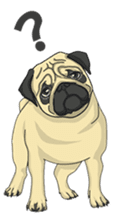 Fawn Pug2 sticker #12485115