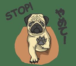 Fawn Pug2 sticker #12485121