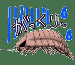 bathynomus giganteus/gusokutan sticker #12493297