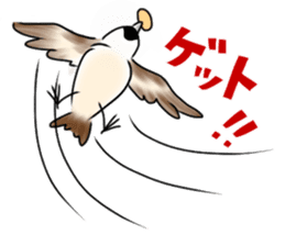 Daily life of a Sparrow sticker #12520850