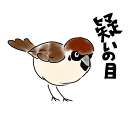 Daily life of a Sparrow sticker #12520852