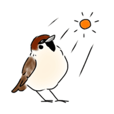 Daily life of a Sparrow sticker #12520865