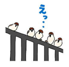 Daily life of a Sparrow sticker #12520867