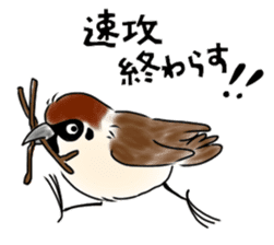 Daily life of a Sparrow sticker #12520871