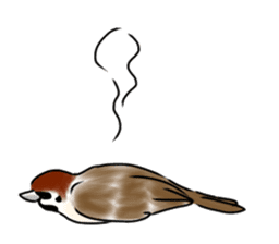 Daily life of a Sparrow sticker #12520872