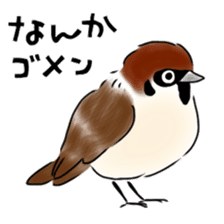 Daily life of a Sparrow sticker #12520874