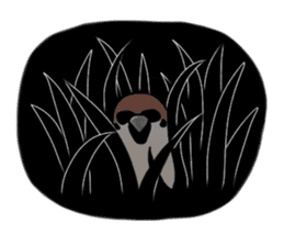 Daily life of a Sparrow sticker #12520885