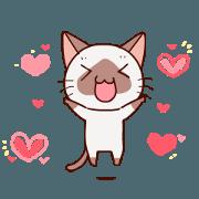 สติ๊กเกอร์ไลน์ Siamese cat animation