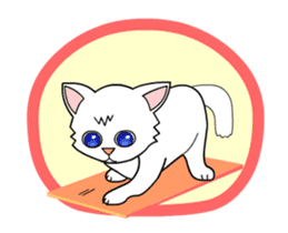 my cat Knee sticker #12552896