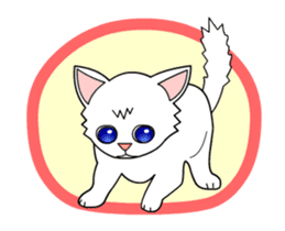my cat Knee sticker #12552911