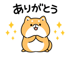 Animation of cute Shiba Inu sticker #12562032