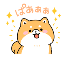 Animation of cute Shiba Inu sticker #12562033