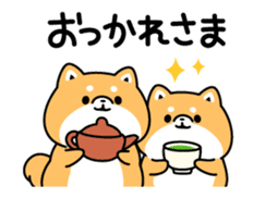Animation of cute Shiba Inu sticker #12562035