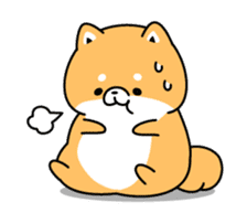 Animation of cute Shiba Inu sticker #12562048