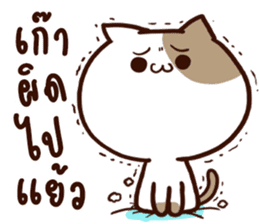 Tofu the cat sticker #12562831