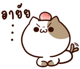 Tofu the cat sticker #12562832