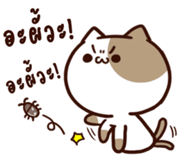 Tofu the cat sticker #12562834
