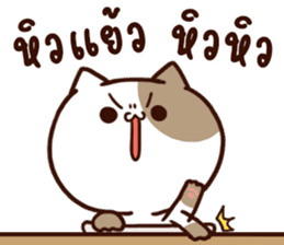 Tofu the cat sticker #12562835