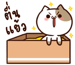 Tofu the cat sticker #12562842