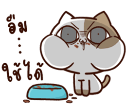Tofu the cat sticker #12562845