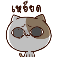 Tofu the cat sticker #12562861