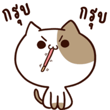 Tofu the cat sticker #12562863