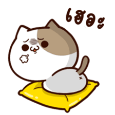 Tofu the cat sticker #12562864