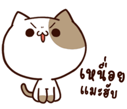 Tofu the cat sticker #12562865