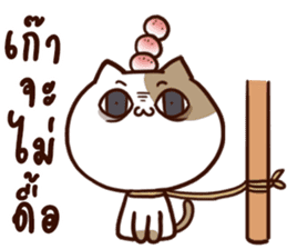 Tofu the cat sticker #12562868