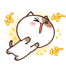 Tofu the cat sticker #12562869