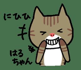 Haruchan cat sticker #12565775