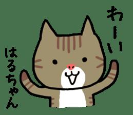 Haruchan cat sticker #12565777