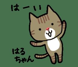 Haruchan cat sticker #12565784