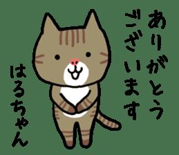 Haruchan cat sticker #12565789