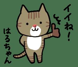 Haruchan cat sticker #12565794