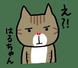 Haruchan cat sticker #12565806