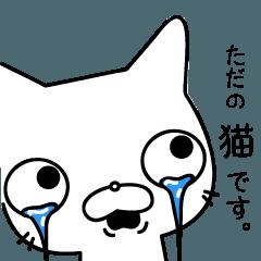 そっけなくも可愛い猫田一郎
