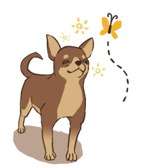 Droopy-eyed Chihuahua and cat