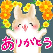 สติ๊กเกอร์ไลน์ Flowers and Hares