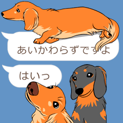 Hukidashi Dachshunds vol.3