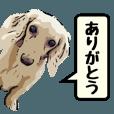 動くリアル犬's - クリエイターズスタンプ