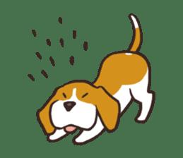 Pun Pun Beagle sticker #12662522