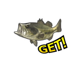 Let's go lure fishing - Black bass - sticker #12681695